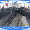 Сеть рыб PE Knotless (SDC17946)
