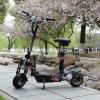 Adulto Dos Ruedas Min E-scooters QX-2001