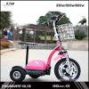 E-Bici aprobada del Ce con 3 ruedas 36V/12ah 500W para el adulto