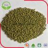 Feijões de Mung verdes secos do preço barato
