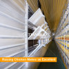 Sistema automático do revestimento da exploração agrícola de galinha das aves domésticas da grelha da camada de Tianrui