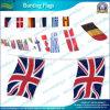 Drapeaux Bunting, drapeaux nationaux Bunting, Drapeaux Bunting Noël (NF11F06007)