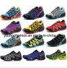 De Schoenen van de sport, Loopschoenen, Atletische Schoenen