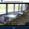 Vector superficial sólido de piedra artificial del restaurante de la cocina de los muebles del diseño con estilo (TW-MATB-070)
