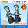 H4-3 OCULTÓ la lámpara de Bixenon, lámpara OCULTADA, luz del xenón