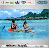 Double / Simple Seaters Haute Qualité Transparent Kayak à vendre
