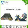 Câble flexible plat de PVC de contrôle de Tvvb Tvvbg