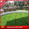 Hierba sintetizada al por mayor de la calidad barata y mejor para el fútbol