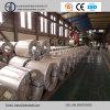 Bobinas laminadas en frío de chapa de acero / Placas de acero de carbono ligero