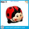 O Ladybug bonito caçoa a caixa da economia do dinheiro do presente