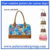 Signora Canvas Bags e borsa di cuoio (HBP-007) di modo