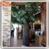 Distintivo diseño de fibra de vidrio artificial Banyan Tree