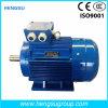 Motore elettrico di induzione Squirrel-Cage asincrona a tre fasi di CA di Ye3 75kw-6p per la pompa ad acqua, compressore d'aria