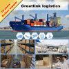 China de condução Forwarding Agent New Chain Logistics Shenzhen aos EUA