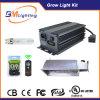 315W CMH растут светлый набор с керамическим галоидом металла светильник 315 ватт с балластом 315W CMH