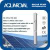 Bombas solares da C.C. |Ímã permanente|Motor sem escova da C.C. |O motor é enchido com água|Poço solar Pumps-4sp14/4 (ST)