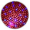 завод 8watt СИД растет светлым (JPGL-1006)