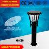 Super helles LED-Solarlicht mit blauem hellem Streifen
