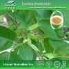 De vervaardiging-Schors van Nutramax Zuur van het Uittreksel van Eucommiae Chlorogenic/van Uittreksel 5-99% van Eucommia Ulmoides