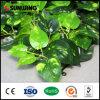 Cerca artificial del plástico del seto de la planta del mejor jardín de Sunwing