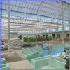 50um UV Coated Virgin Lexan Polycarbonte 쌍둥이 Wall Hollow Sheets