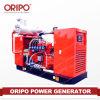 Auto-Regular el movimiento fácil determinado de generación diesel del voltaje