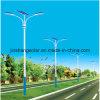 Luz de rua solar dobro da fonte luminosa do diodo emissor de luz do braço (JINSHANG SOLARES)