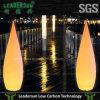 Leadersun iluminou as lâmpadas de assoalho altas Ldx-Fl03