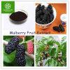 10:1 natural do extrato da fruta do Mulberry de 100%