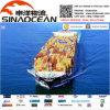 Экспорт инструмента снабжения перевозки моря к Los Angeles от Китая