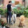 Las manos liberan la correa de la cuerda de la tracción del amortiguador auxiliar de la bicicleta del accesorio del perro del correo del entrenamiento de la bici del perro