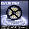 Luz de tira impermeable ligera de SMD2835 300LEDs 12V 5050 lámpara impermeable de 5 contadores