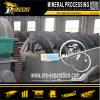 金の鉱石粉砕システム製粉装置螺線形鉱山の助数詞機械