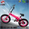 Motocicleta Foldable do pneu gordo de En15194 250W para o adulto