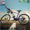 전기 산 E 자전거 중앙 모터 MTB Bicicleta
