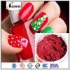 Polvere di mica naturale per il polacco di chiodo, fabbrica minerale del pigmento