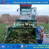 O lago china remove ervas daninhas da ceifeira da estaca