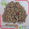 Helle gesprenkelte weiße Bohnen (220-240grains/100g)