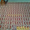 Finestra Chain di alluminio registrabile personalizzabile della tenda dell'argano