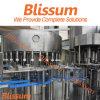 Enchimento da água e máquina de embalagem/planta puros automáticos