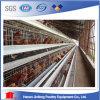 Equipo del pollo de las aves de corral (9LDT-4-H390-4I)