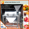 Udhx-400 Fruit or Vegetable Pulping Machine
