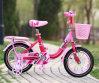 Neues Entwurfs-Fahrrad, Kind-Fahrrad, scherzt Fahrrad