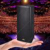 Qs-2580 de dubbele Professionele AudioSprekers Jbl van het Stadium 15 Duim