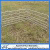 5, panneau ovale de yard de 6 de barres de Pregalvanized moutons de longeron