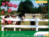 PVC Horse Fence con Good Quality