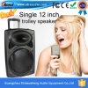 Einzelnes 12-Inch High End Active Trolley Speakers FM Radio