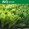 Grass sintetico per il PE Turf (A350416WS08811) di Soccer Fibrillated
