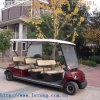 8 veicoli utilitari di golf elettrico legale della via delle sedi