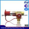 QF-T1H4 CNG Fuel Filling Valve avec Nozzle (pièces d'auto)